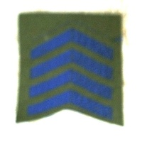 OVERSEAS SERVICE CHEVRONS 5 BAR